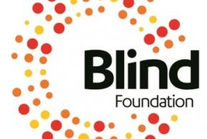 blind foundation disability support services